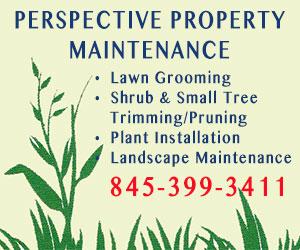 Perceptive Property Maintenance