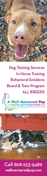 Well Mannered Pup - Dog Training Services