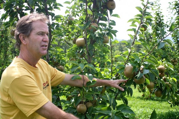 Dave Butler runs Skytop Orchard, a U-pick orchard in Zirconia that 60 acres of apple, pear and peach trees.