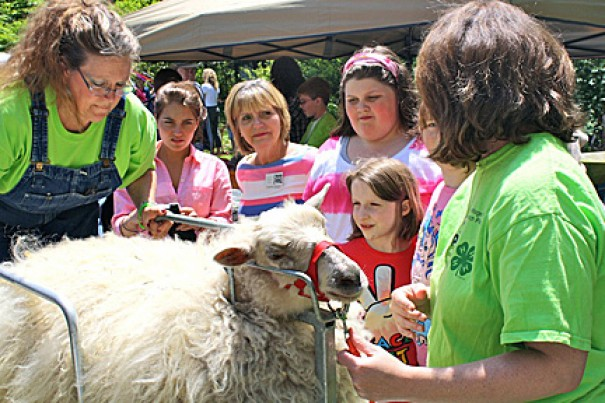 The Spring Festival Saturday at Historic Johnson Farm is an event for the whole family.