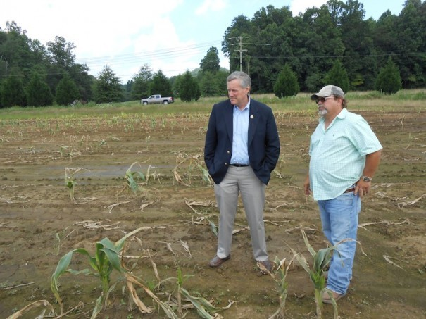 U.S. Rep. Mark Meadows and Mills River Kirby Johnson stand in a corn field ruined by flooding.