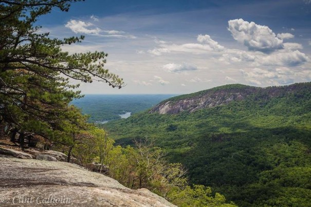 View from Grey Rock on Weed Patch Mountain Trail. [PHOTO BY CLINT CALHOUN]