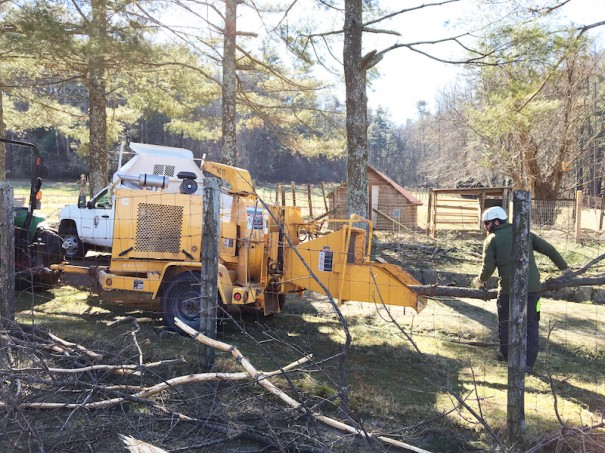 Rangers clear storm damage from the ice storm that occurred during the government shutdown.
